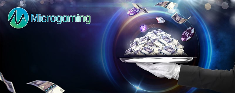 Profitable casino with slot games from Microgaming